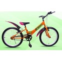 20 inch Single Speed Mountain Bike