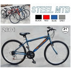 26 inch 21 Speed Mountain Bike